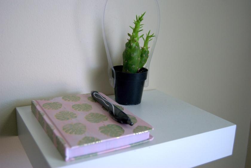 cactusshelf.jpg